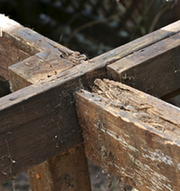 J r damp proofing wood treatment waterproofing in