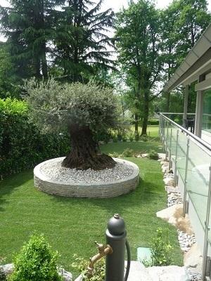 Matteo Vimercati Giardini