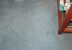 ABC Carpet Cleaners image 4