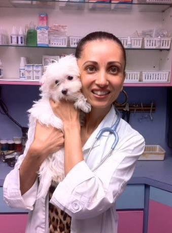 Animal Care Brooklyn, NY