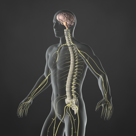 Healthpoint Chiropractic image 2