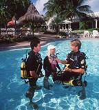 Sea Dwellers Dive Center of Key Largo image 2