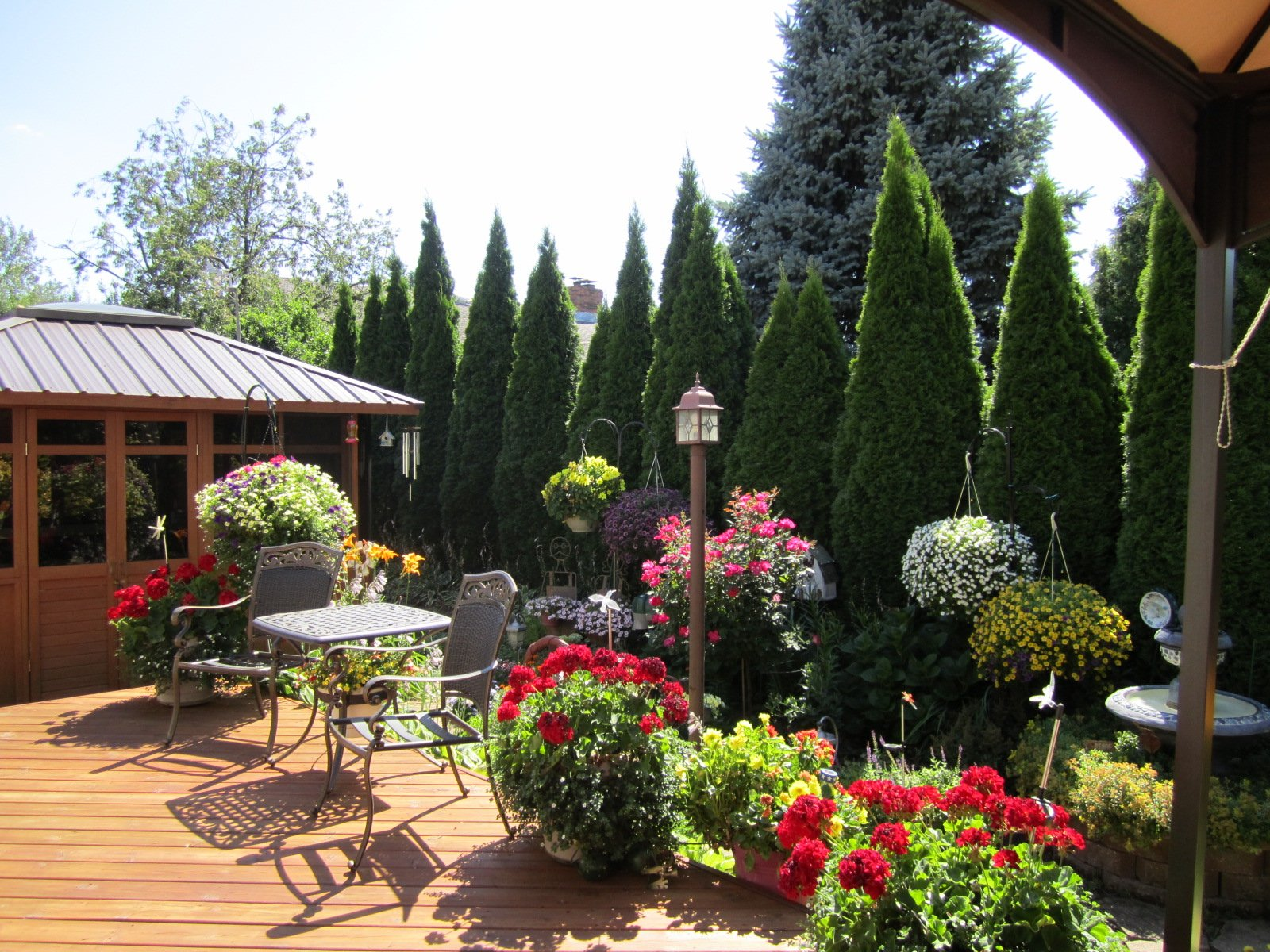 Anns Landscaping image 7
