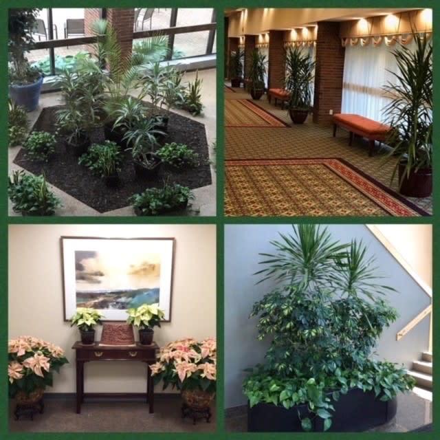 Nature's Way Plant Service, LLC image 2
