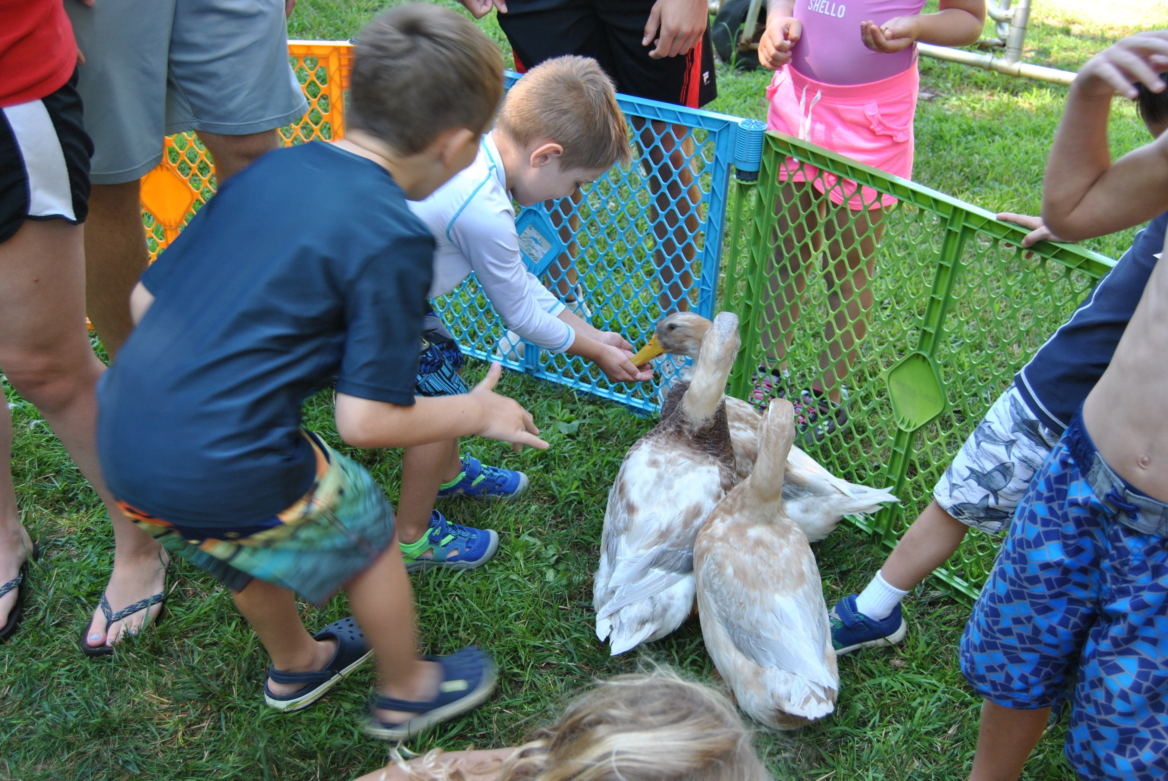 Chartwell's Happy Day Camp Marlton image 52