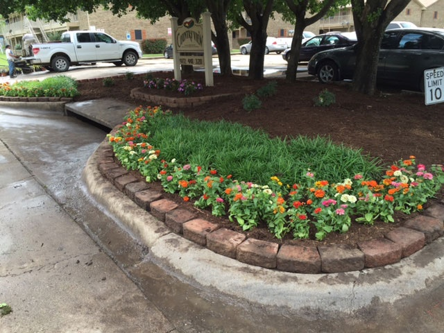 Mow Pros Lawn, Landscapes and Irrigration image 0