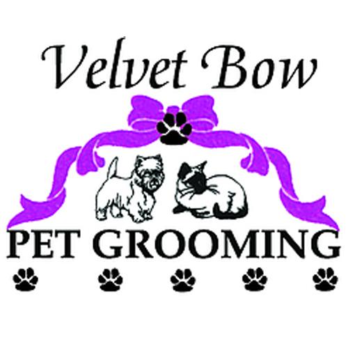 Velvet Bow Pet Grooming Southeast image 10