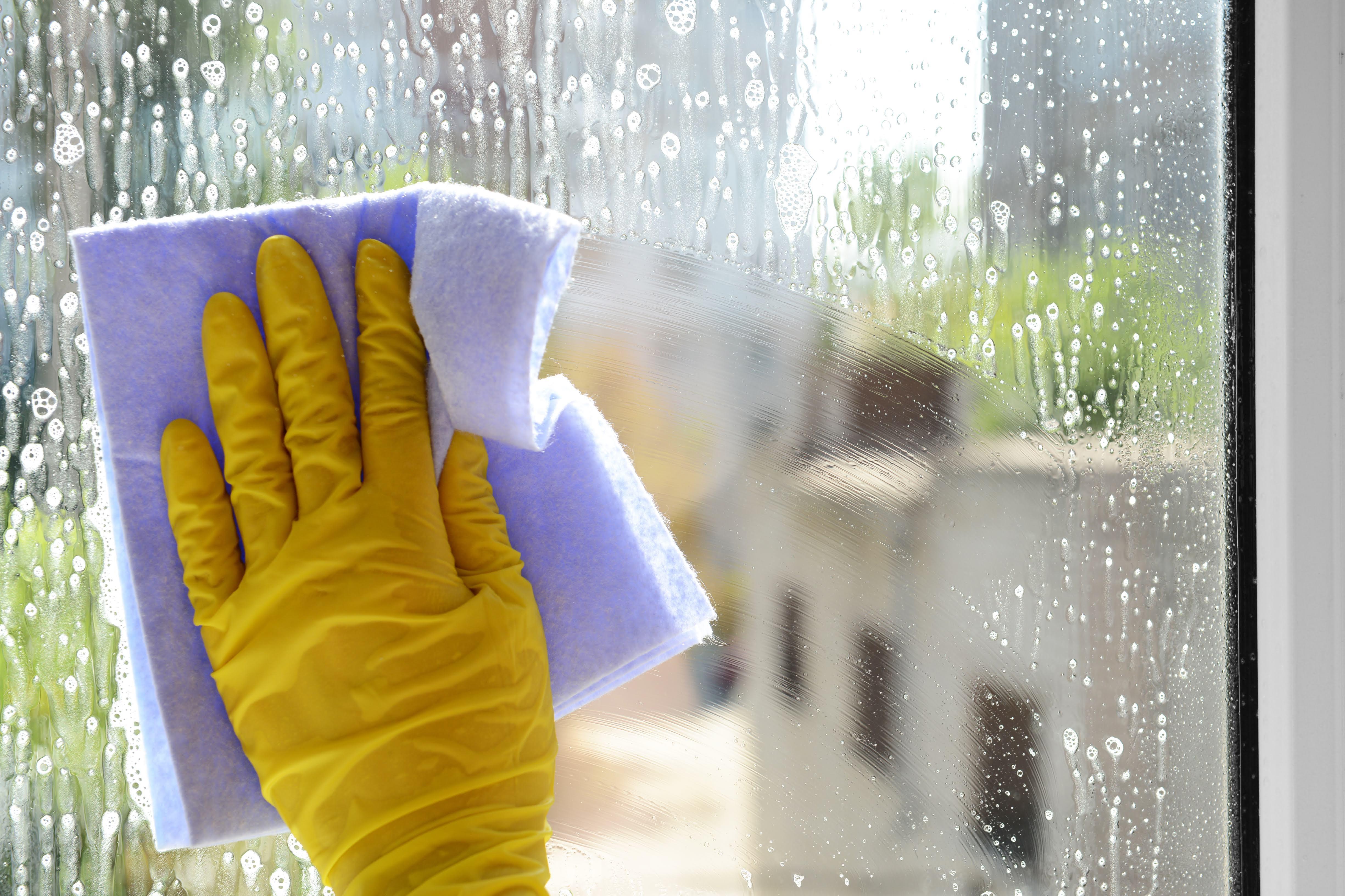 Della's Window Cleaning, LLC image 0