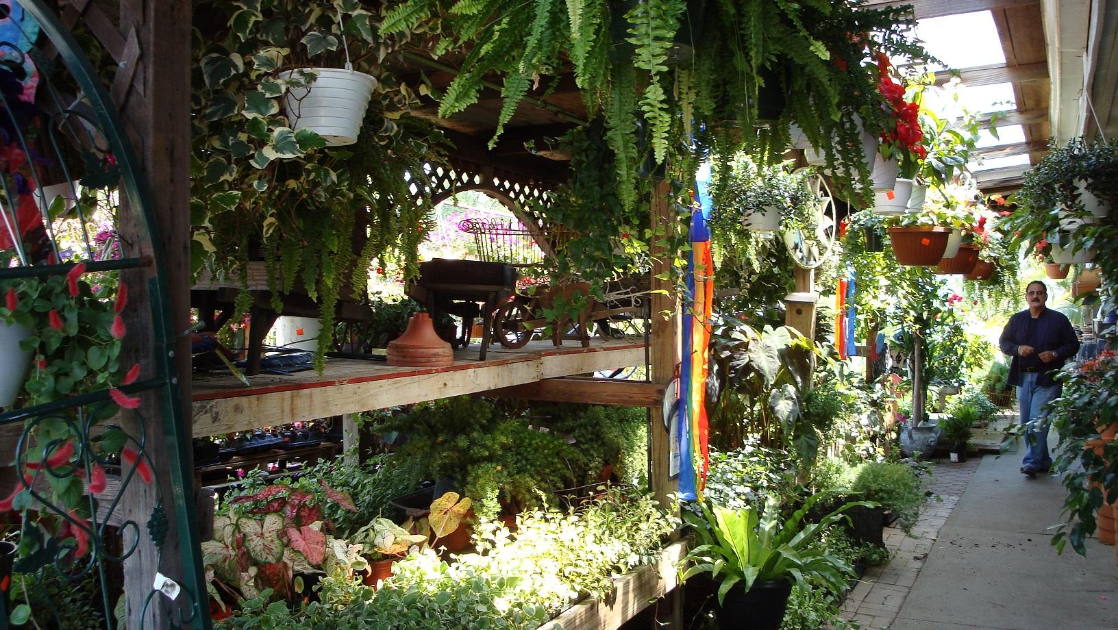 Tony Distefano Landscape Garden Center image 7