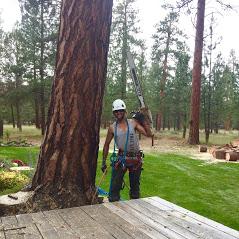 Central Oregon Tree Experts image 23