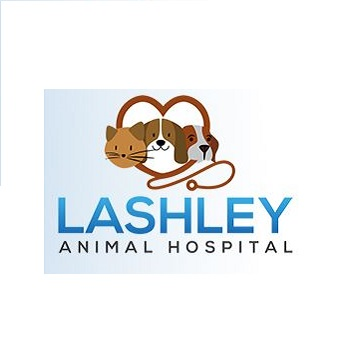 Lashley Animal Hospital image 0