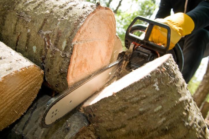 Garcia Amigo Tree Service image 0