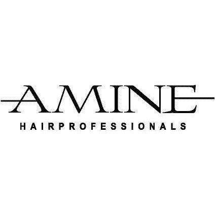 Logo von AMINE Hairprofessionals