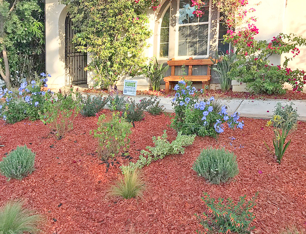 Flores Landscaping image 48