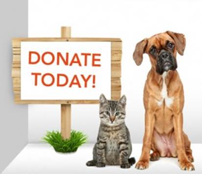 Donation Drive for the Humane Society for Hamilton County   The doctors and staff at Fall Creek Dentistry are excited to once again support the Humane Society for Hamilton County. Please help us with