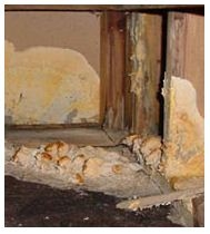 Guardian Home Inspections image 6