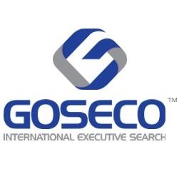 image of GOSECO International Executive Search