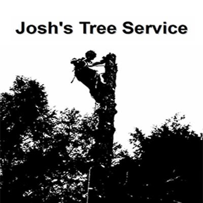 Josh's Tree Service image 0