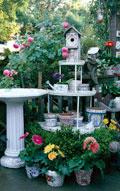 Snavely's Garden Corner image 3