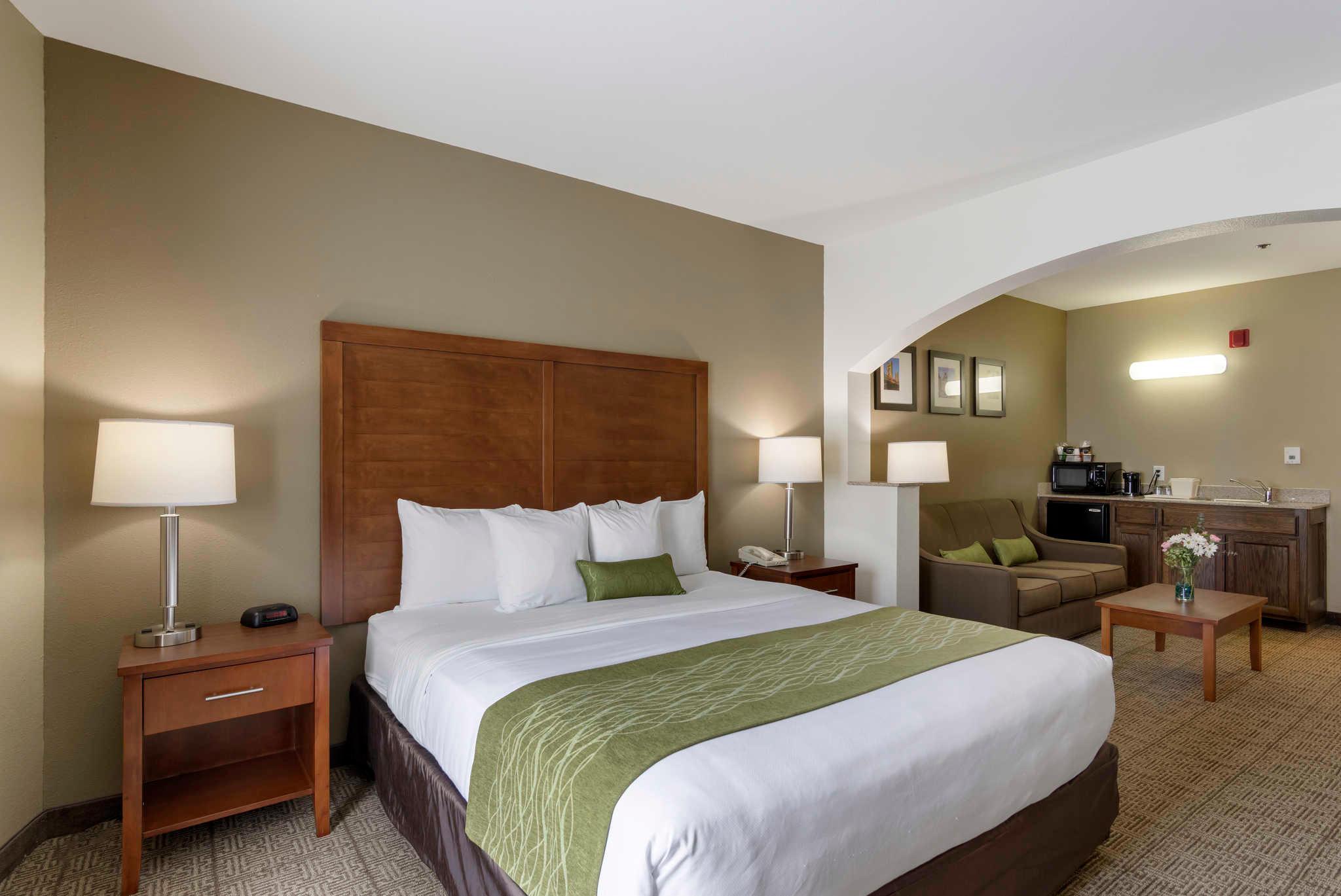 Comfort Inn & Suites Sacramento - University Area image 22