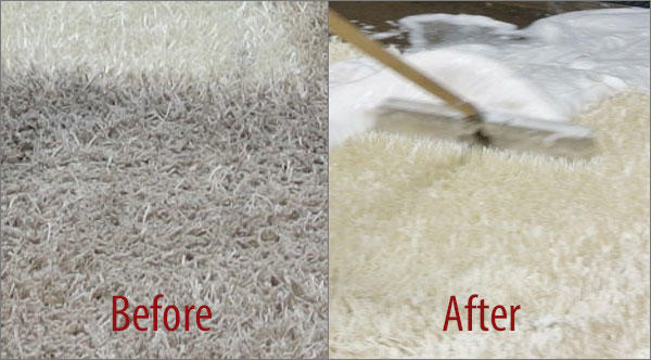 Rx Carpet and Upholstery Cleaning Services image 4