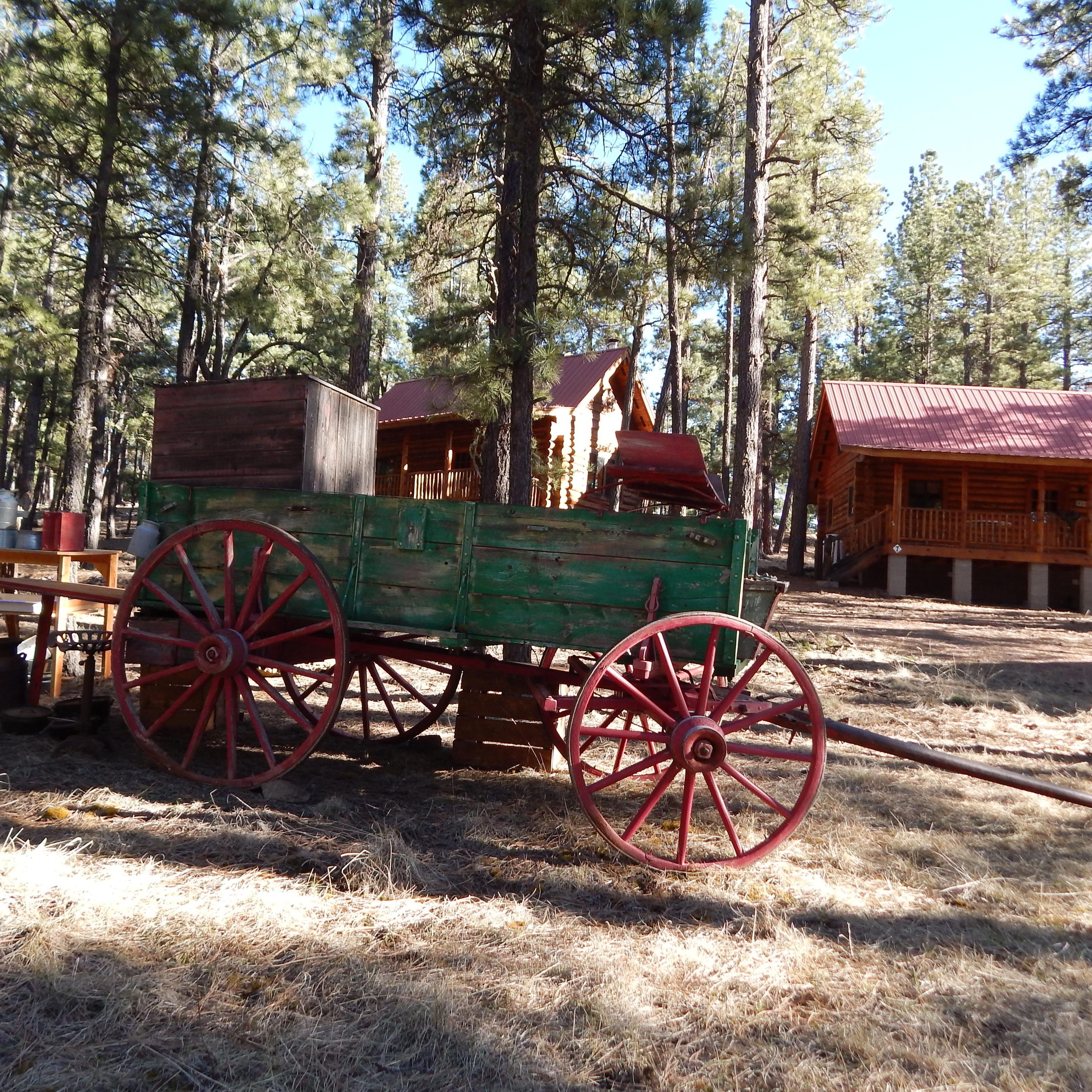 Cow Camp Cabins image 4