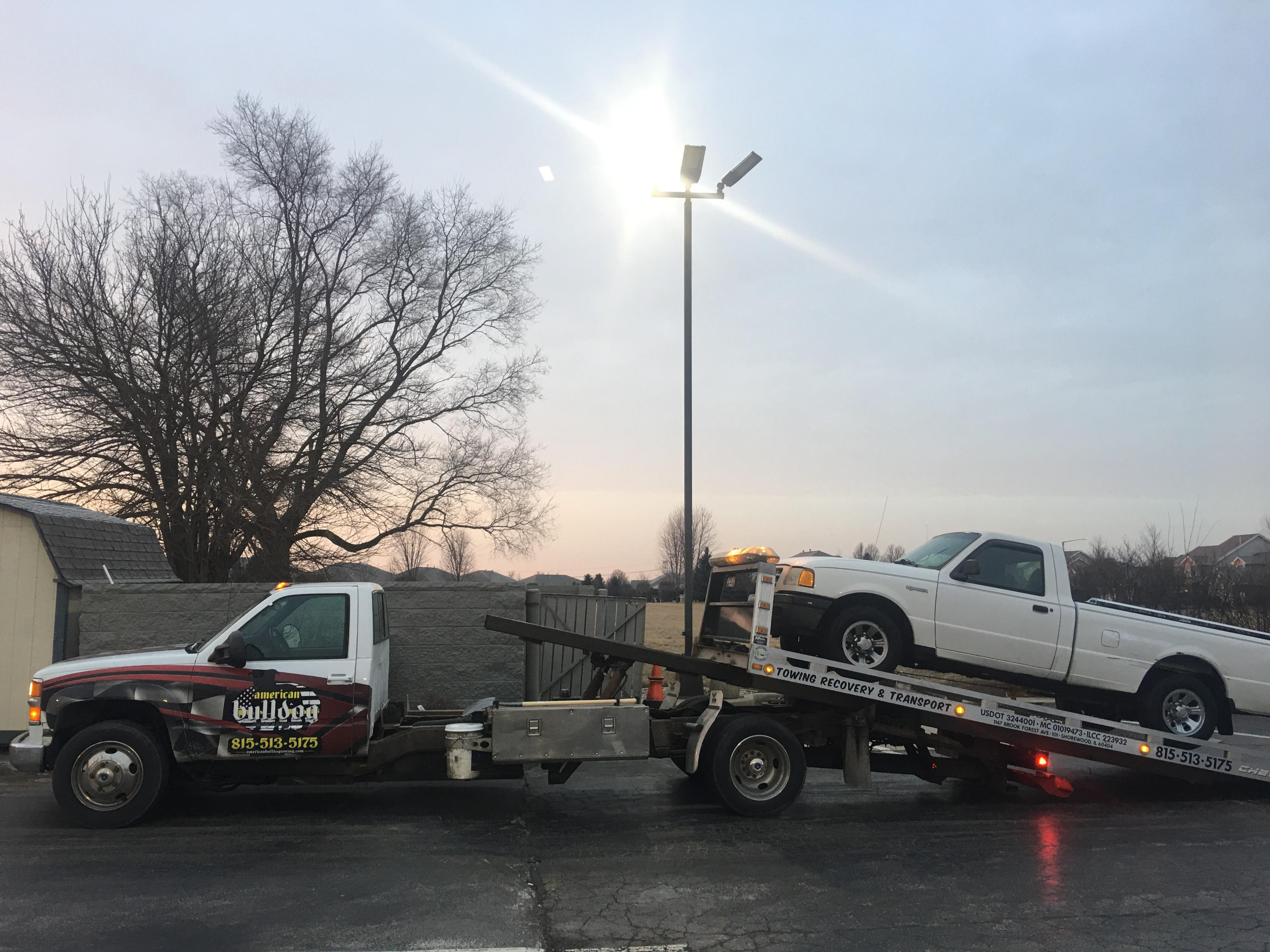 American Bulldog Towing and Recovery
