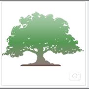 J&L Tree Service Inc.