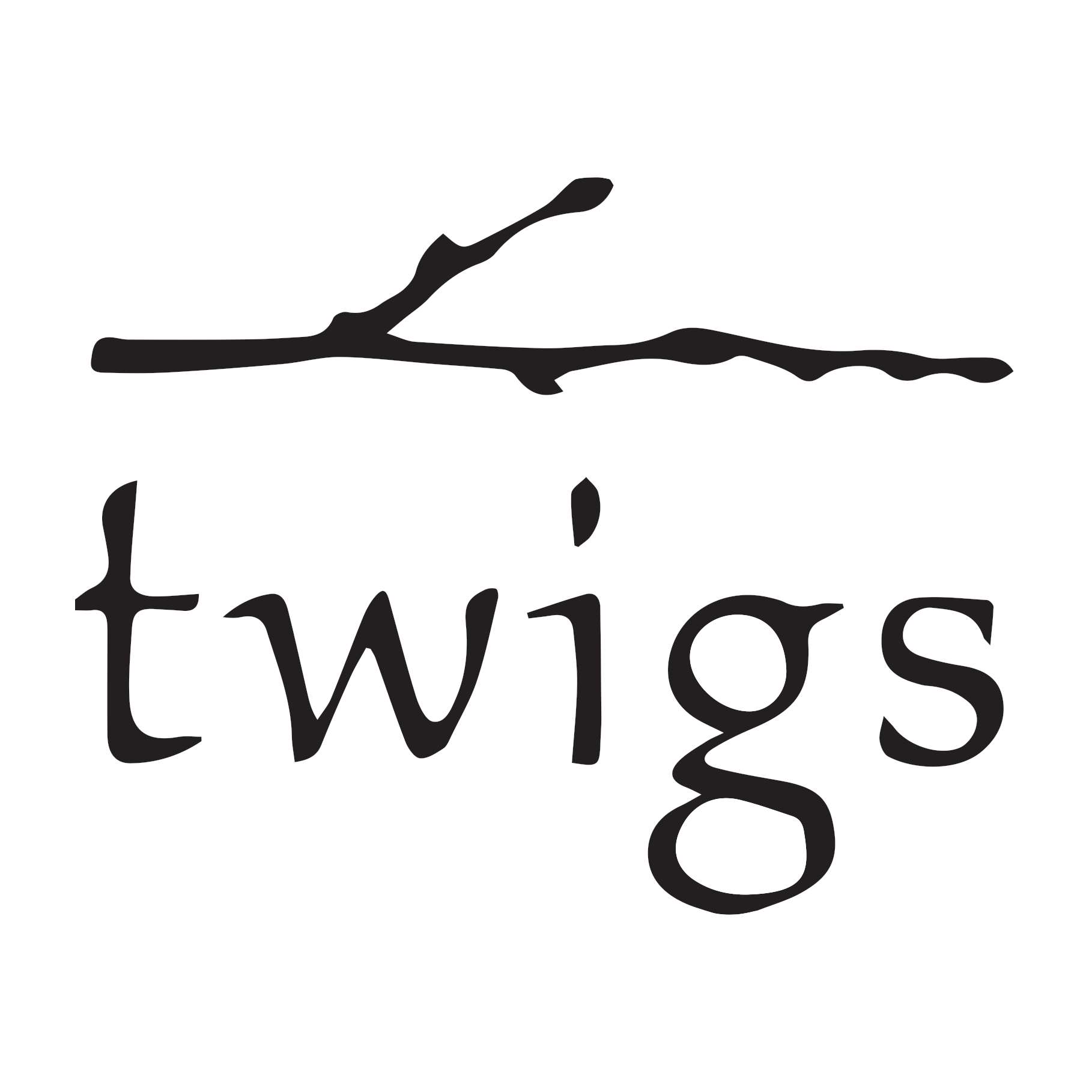 Twigs | The Corners of Brookfield