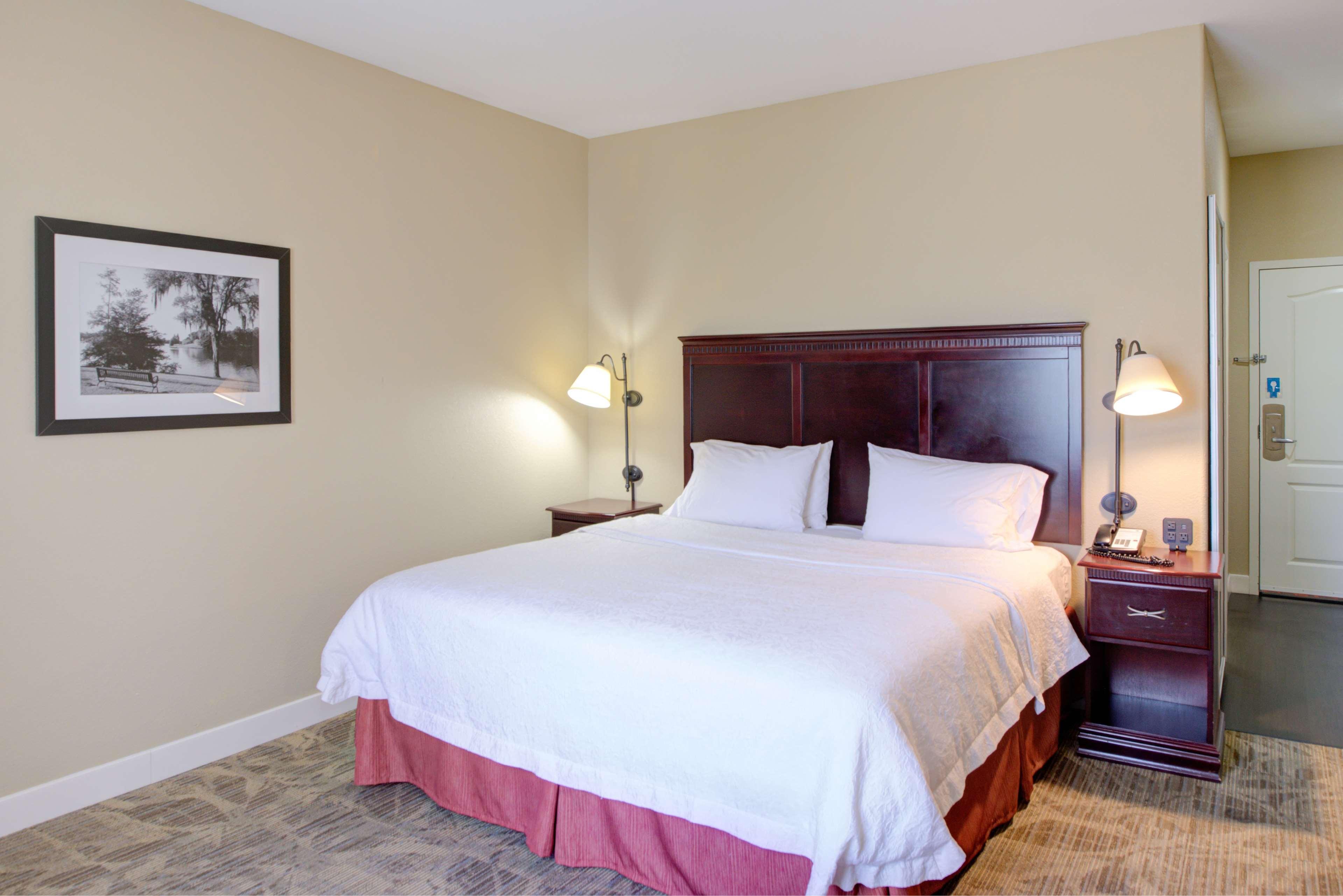 Hampton Inn Baton Rouge - Denham Springs image 16