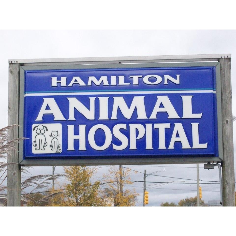 Hamilton Animal Hospital image 5