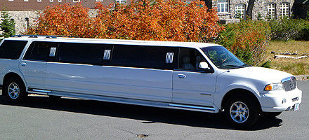 Exquisite Limo image 3