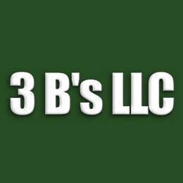 3 B's LLC image 1