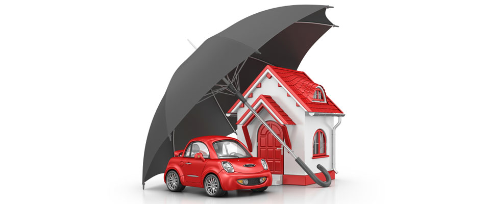 Omega Insurance Agency Tampa - Auto Insurance, Home Insurance & More image 0
