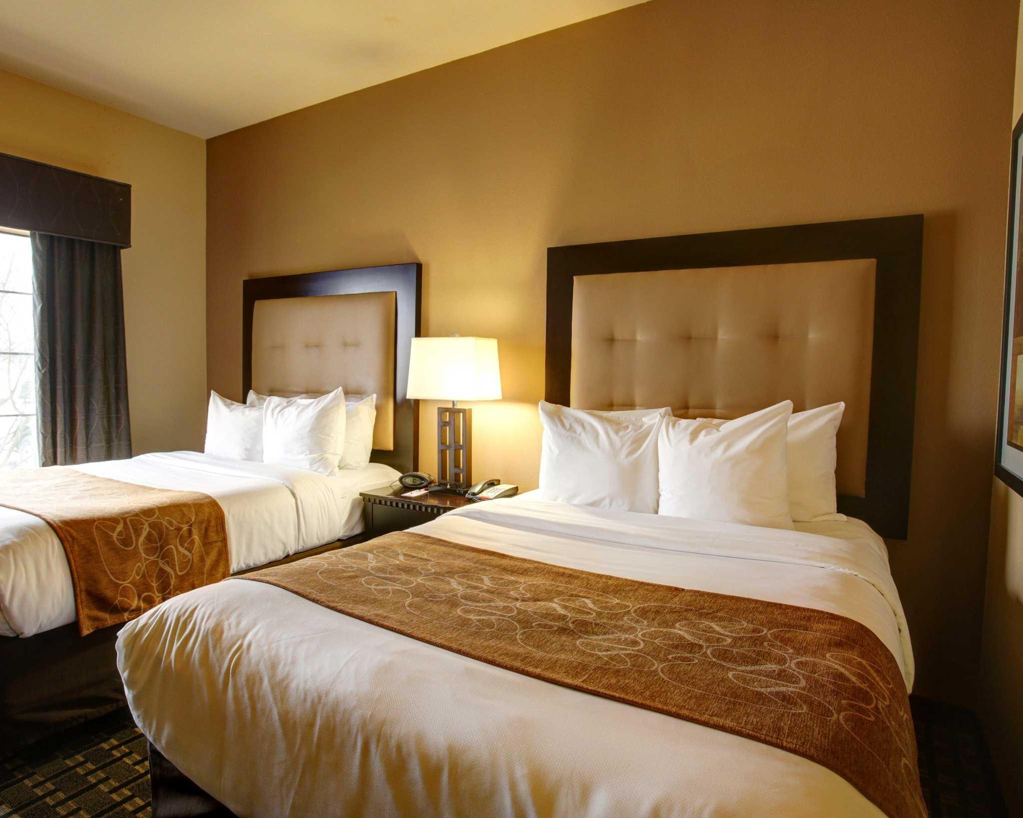 Comfort Suites Buda - Austin South image 4