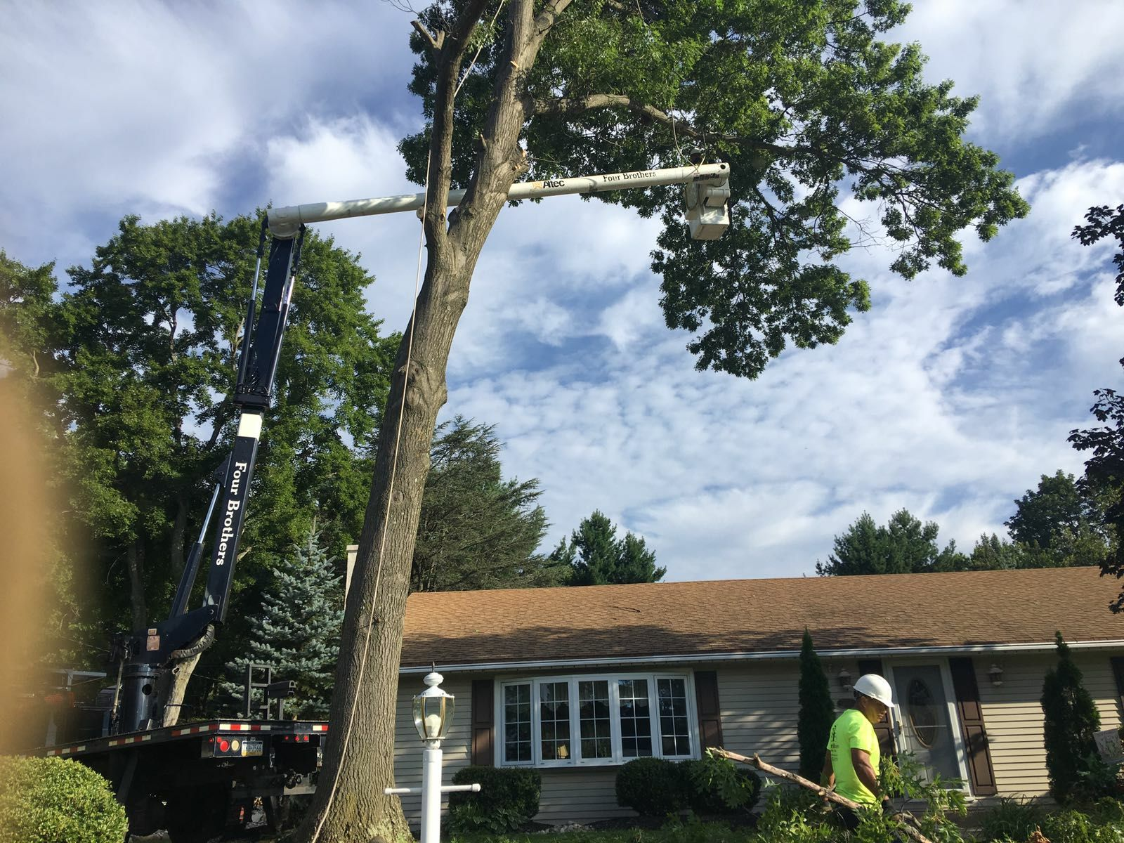 Four Brothers Tree Service Inc. image 30