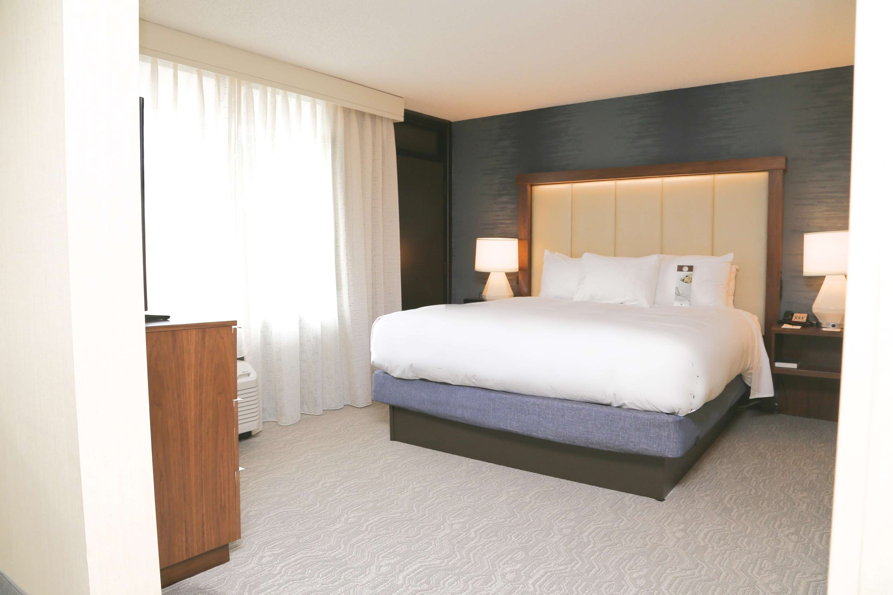 DoubleTree by Hilton Boston - Andover image 17