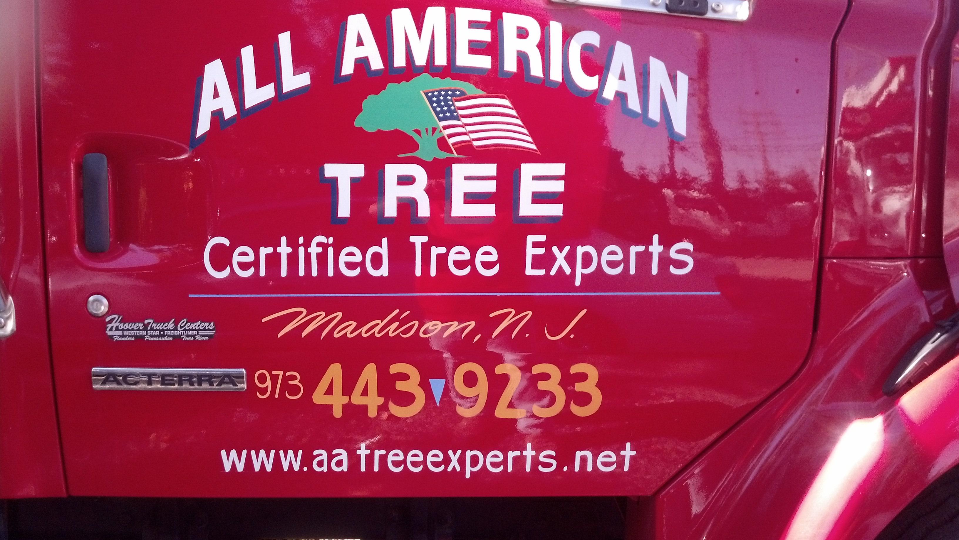 All American Tree Service