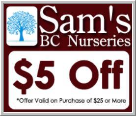 Sam's Bargain Center image 5