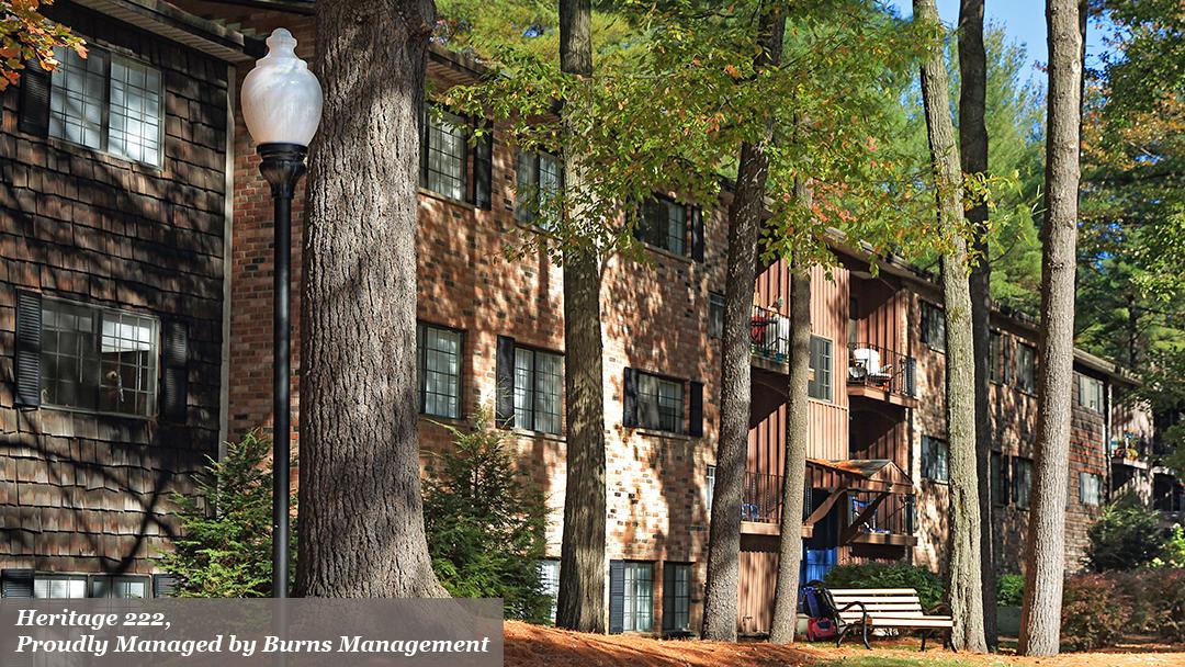 Burns Management image 7