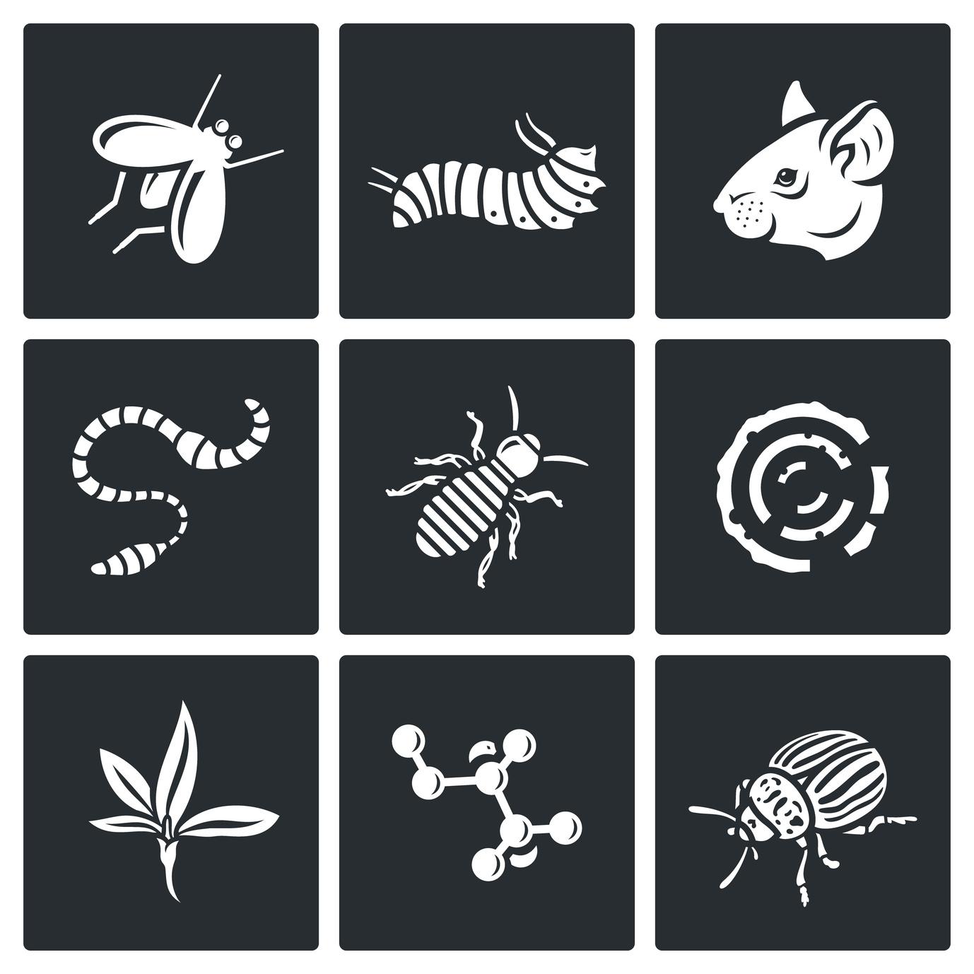 Verminator Pest Control LLC image 0