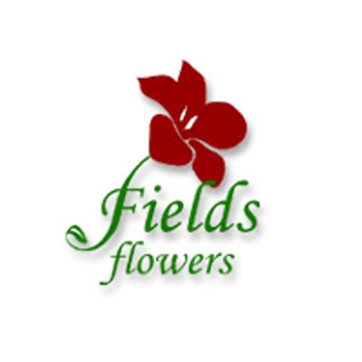 Fields Flowers image 10