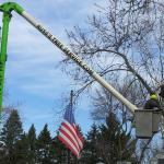 Russ's Tree Service image 5