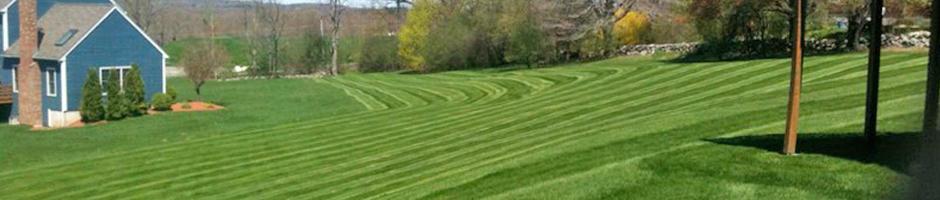 Precision Landscape Management Inc. image 3