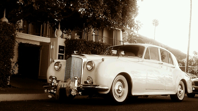 White Rose Limousine Inc image 8