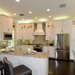 The Ridge at Wiregrass Ranch by GL Homes image 4