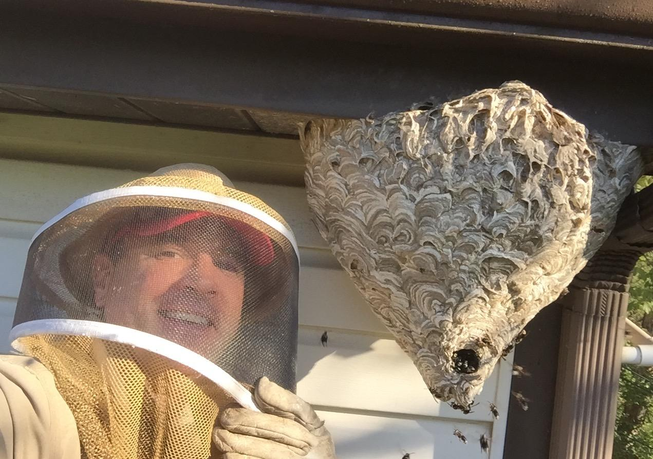 The Bee Man image 1