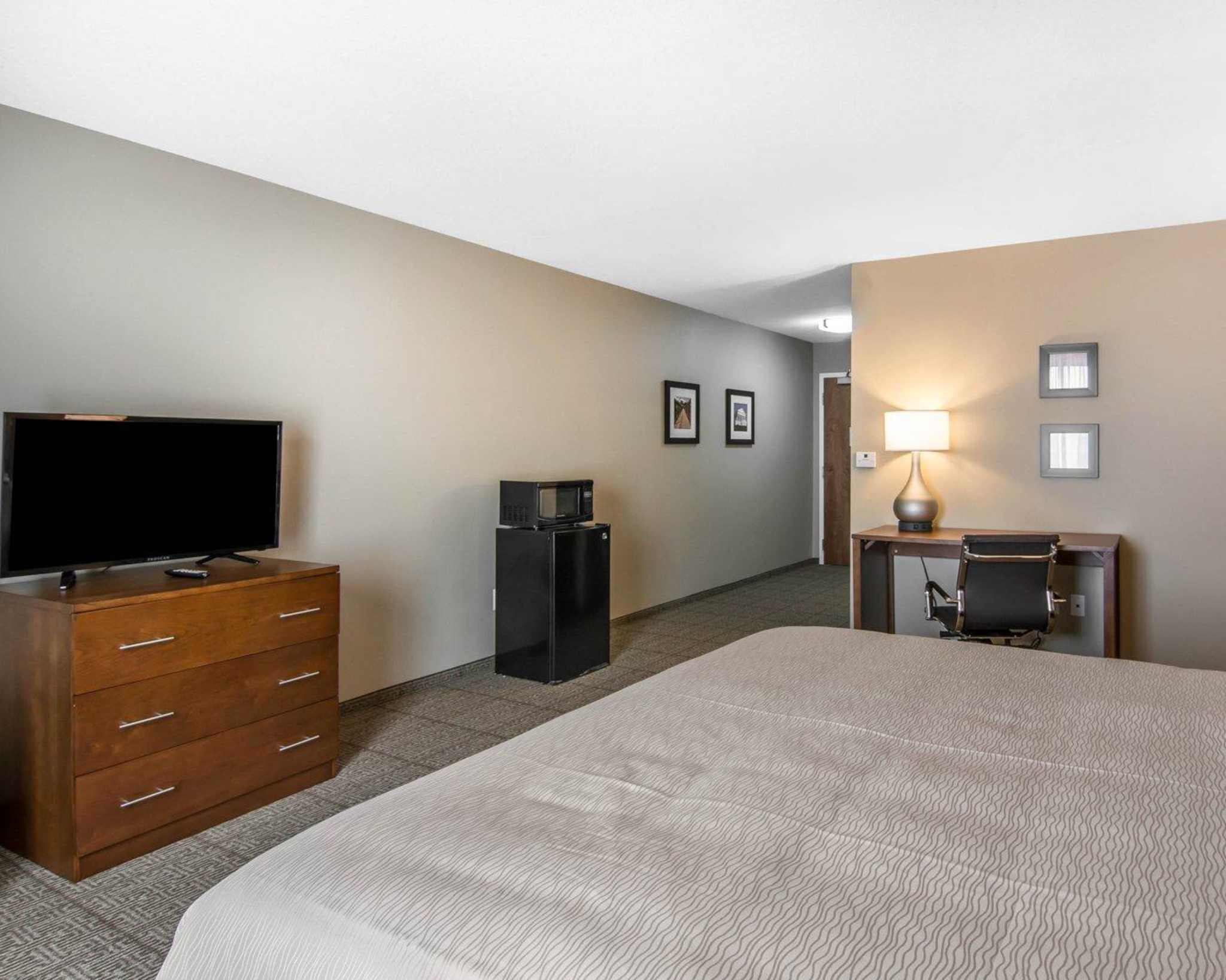 Comfort Inn South Chesterfield - Colonial Heights image 9