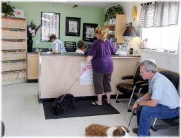 The Vets Animal Hospital image 2