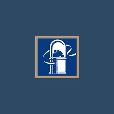 Robert S Engel Investments LLC